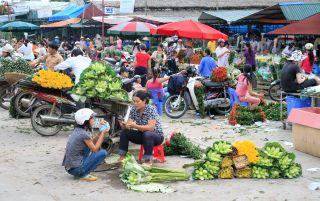 Haggling in the Hanoi flower market